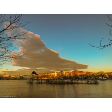 Fotogalleri 2. Fugleøen ved søerne i København
