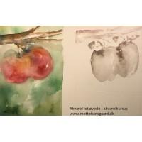 Akvarel kursus let øvede akvarelkursus modul 2